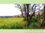 paisagem 03